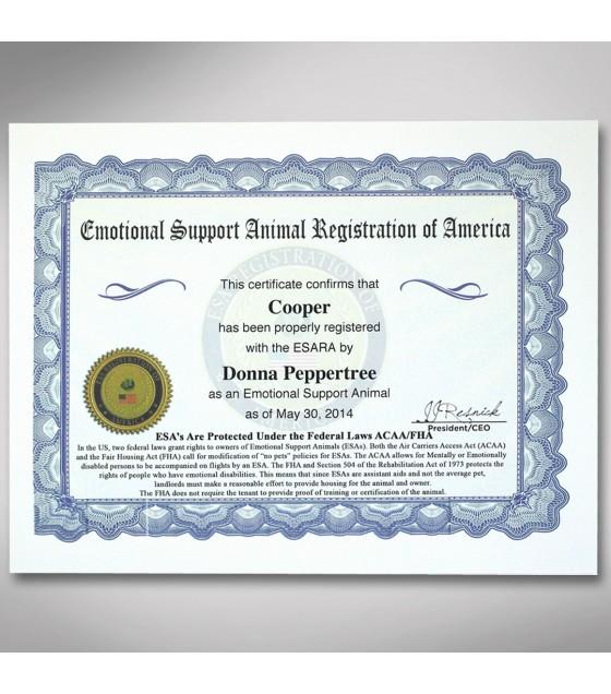 esa certificate